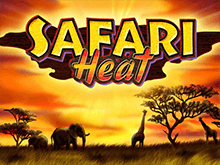 Safari Heat в онлайн казино